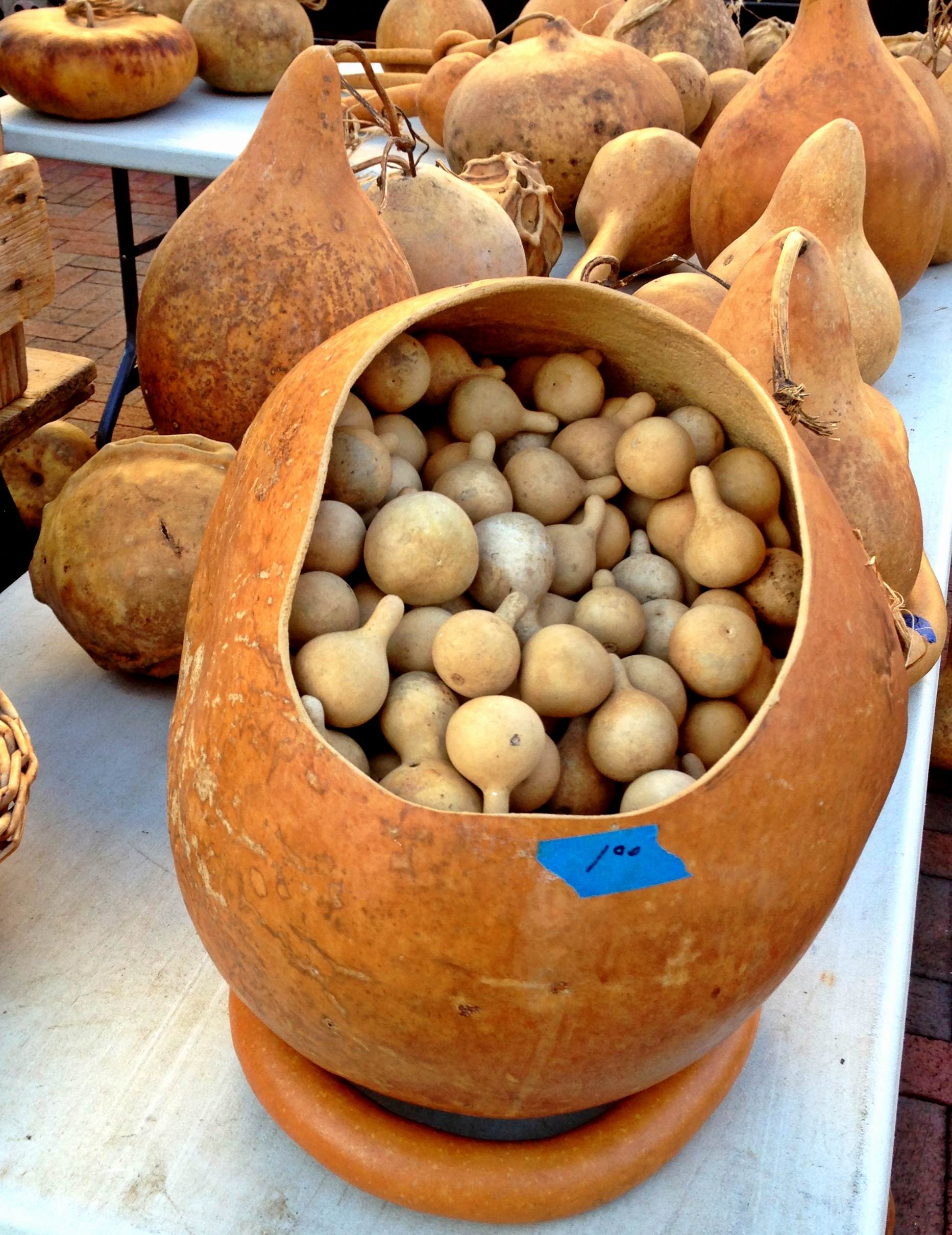 The First Dane County Farmers Market of the Season