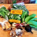 CSA Box #1 – Ramps, Nettles, Sorrel, Spinach!
